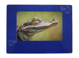 "Blue Alligator 4"" x 6"" Magnetic Photo Frame (Horizontal/Landscape)"
