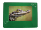 "Green Alligator 4"" x 6"" Magnetic Photo Frame (Horizontal/Landscape)"