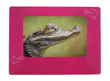 "Pink Alligator 4"" x 6"" Magnetic Photo Frame (Horizontal/Landscape)"