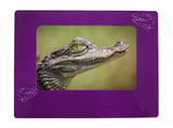 "Purple Alligator 4"" x 6"" Magnetic Photo Frame (Horizontal/Landscape)"