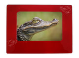 "Red Alligator 4"" x 6"" Magnetic Photo Frame (Horizontal/Landscape)"