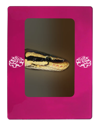 Personalized Ball Python 4 X 6 Magnetic Photo Frame Vertical Portrait Made In Usa Critter Gifts