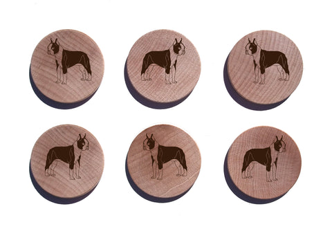 Boston Terrier Maple Magnet Set of 6