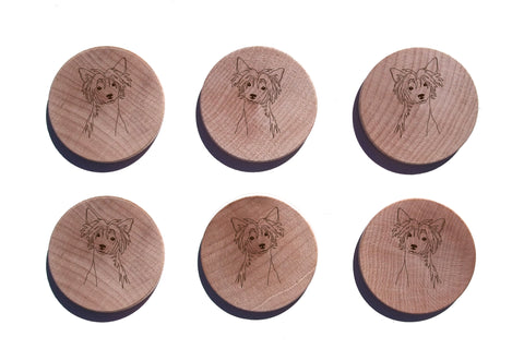 Chinese Crested Maple Magnet Set of 6