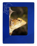 "Blue Gecko 4"" x 6"" Magnetic Photo Frame (Vertical/Portrait)"
