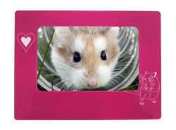 "Pink Gerbil 4"" x 6"" Magnetic Photo Frame (Horizontal/Landscape)"