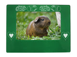 "Green Guinea Pigs 4"" x 6"" Magnetic Photo Frame (Horizontal/Landscape)"
