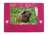 "Pink Guinea Pigs 4"" x 6"" Magnetic Photo Frame (Horizontal/Landscape)"