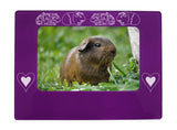 "Purple Guinea Pigs 4"" x 6"" Magnetic Photo Frame (Horizontal/Landscape)"