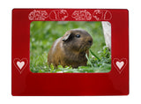 "Red Guinea Pigs 4"" x 6"" Magnetic Photo Frame (Horizontal/Landscape)"
