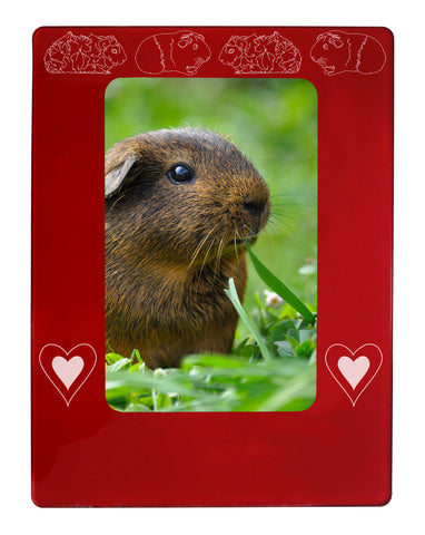 "Guinea Pigs 4"" x 6"" Magnetic Photo Frame (Vertical/Portrait)"
