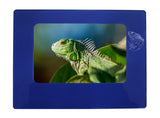 "Blue Iguana 4"" x 6"" Magnetic Photo Frame (Horizontal/Landscape)"