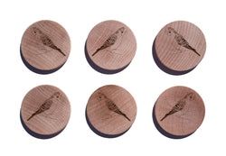 Parakeet Maple Magnet Set of 6