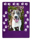"Purple Pawprints 4"" x 6"" Magnetic Photo Frame (Vertical/Portrait)"