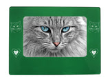 "Green Ragdoll Cat 4"" x 6"" Magnetic Photo Frame (Horizontal/Landscape)"