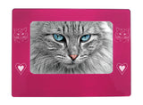 "Pink Ragdoll Cat 4"" x 6"" Magnetic Photo Frame (Horizontal/Landscape)"