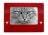 "Red Ragdoll Cat 4"" x 6"" Magnetic Photo Frame (Horizontal/Landscape)"
