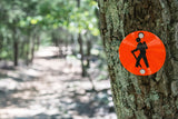 HOW TO AVOID INJURIES ON THE TRAIL