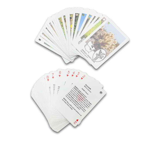 Edible Wilderness Playing Cards 1