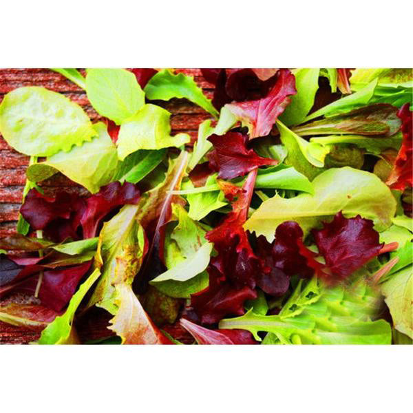 10 Ways To Style Your Very Own Vegetable Garden: Mesclun Mix Seeds
