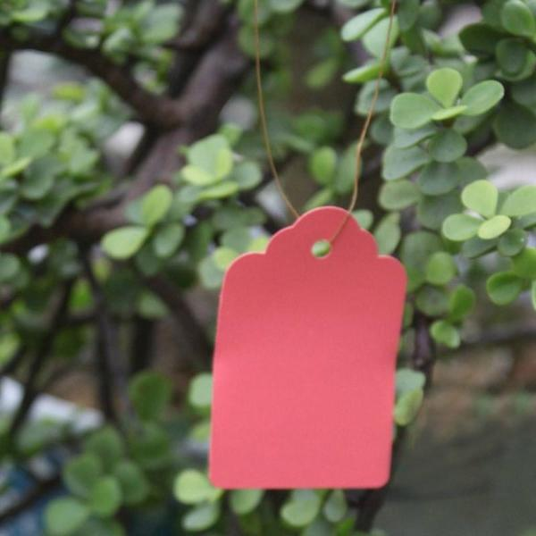 Waterproof Plastic Strip Line Garden Labels