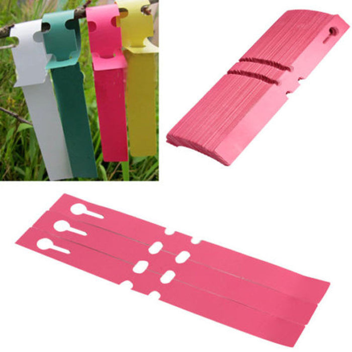 Plastic Stake Tied Tag Seed Labels