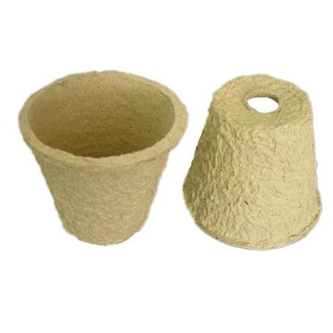 Biodegradable Flower Pot - Rama Deals - 1