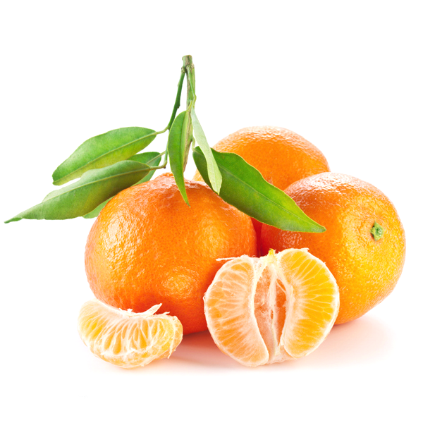 Valencia Orange Fruit Seeds