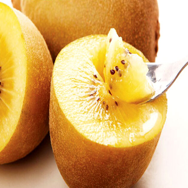 Gold Yellow Kiwi Fruit Seeds