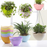 Decor Resin Round Plastic Pots For Plants