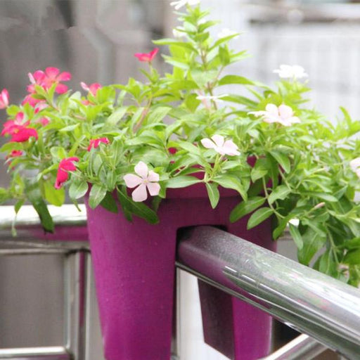 Special Designed Flower Pot For Balcony