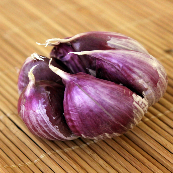 Multi-Petals Garlic Seeds