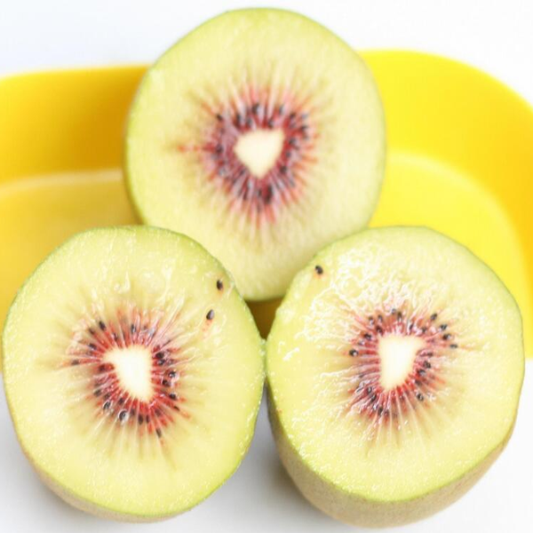 Potted Light Yellow Kiwi Seeds
