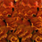 Orange Snapdragon Flower Seeds
