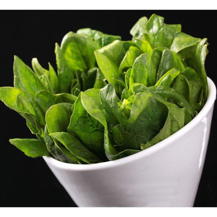 Green Salad Spinach Leave Seeds