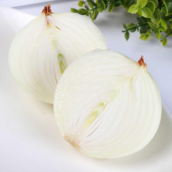 White Onion Heirloom Vegetable Seeds