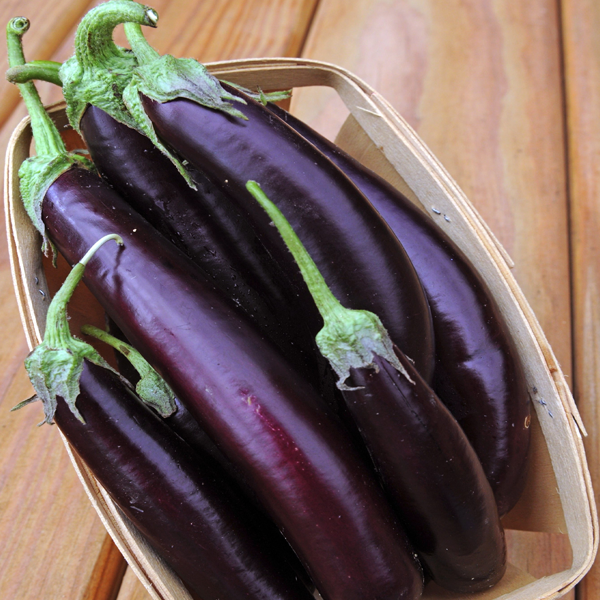 Machiaw Purple Eggplant Vegetable Seeds