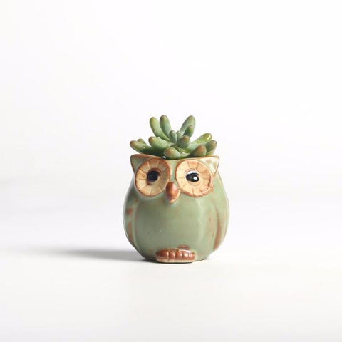 Owl-shaped Flower Pot for Home/Garden/Office Decoration