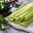 Celery Organic Vegetable Seeds