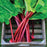 Rhubarb 'Raspberry Red'  vegetable Seeds