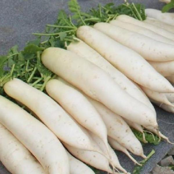 10 Ways To Style Your Very Own Vegetable Garden: White Radish Seeds