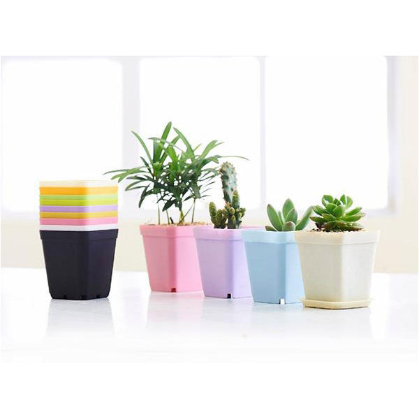 Multi Color Plastic Square Flower Pots