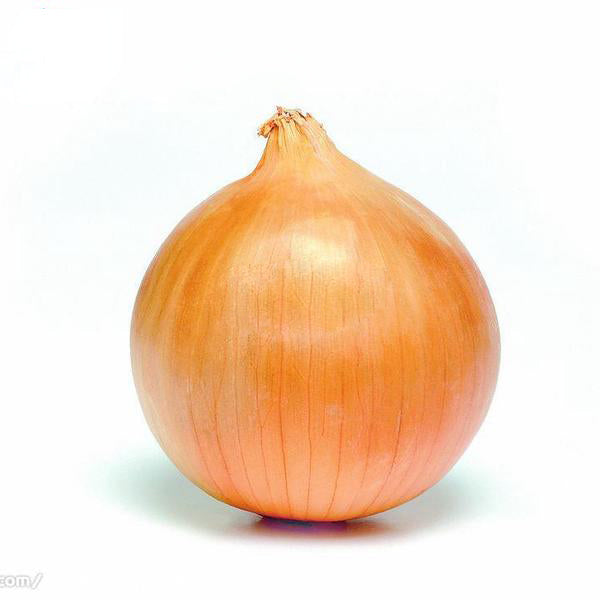 Giant Onion Seeds