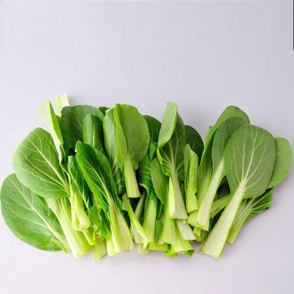 Pak Choi Bok Choy Chinese Cabbage Seeds