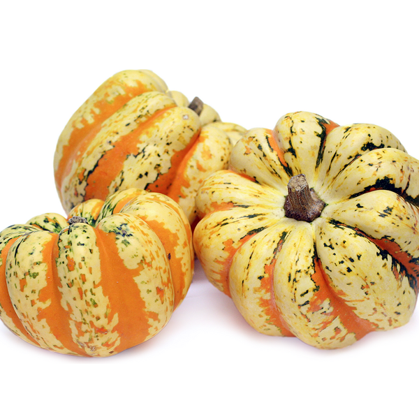 Carnival Squash Seeds