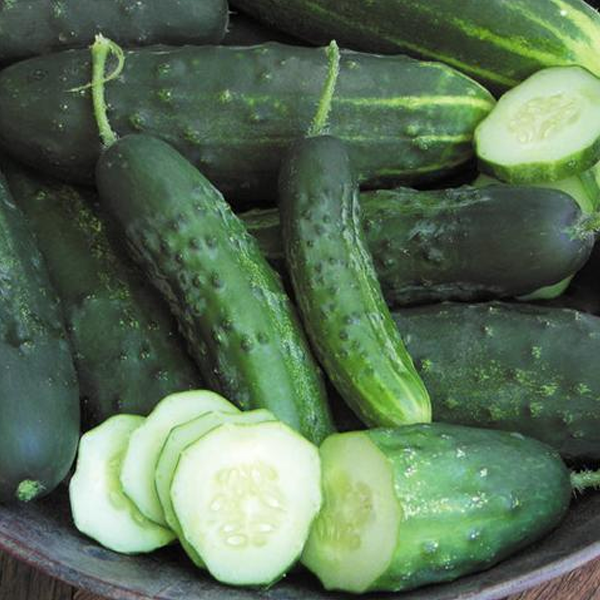 Crispy Cucumber Seeds