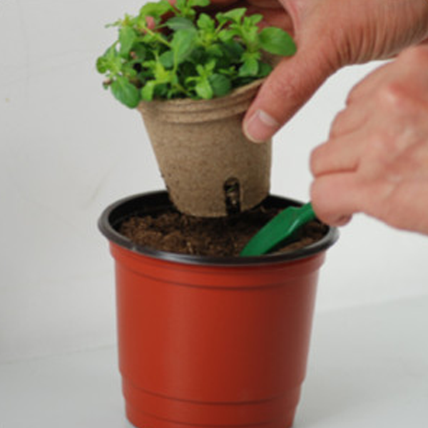 Biodegradable Flower Pot - Rama Deals - 3