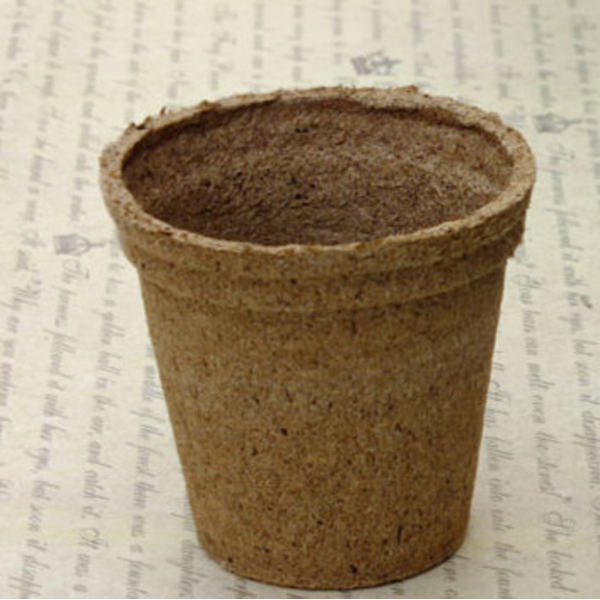 Biodegradable Flower Pot - Rama Deals - 2