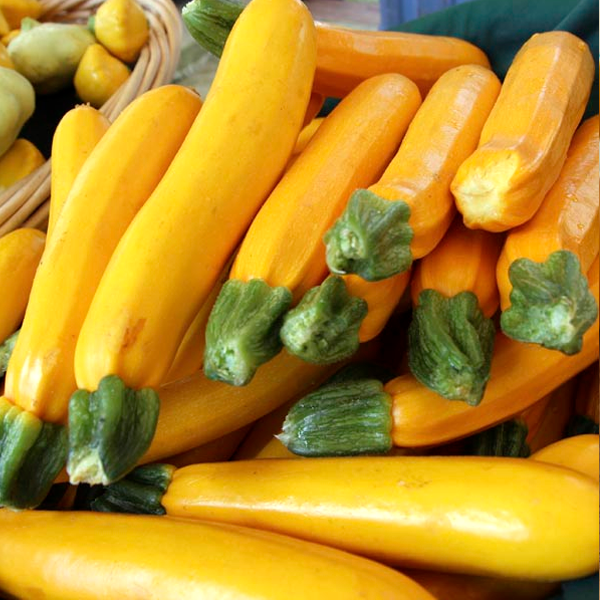 10 Ways To Style Your Very Own Vegetable Garden: Yellow Zucchini Seeds