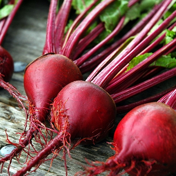 Red Beet Seeds